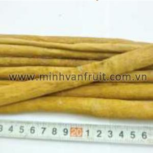 Cassia Vera 20-22cm 1