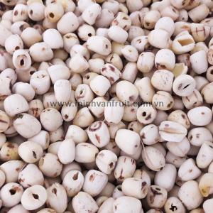 Dried White Lotus Seeds 1