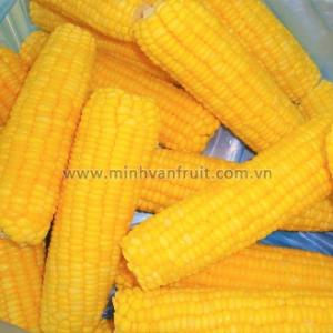 Frozen Sweet Corn 1