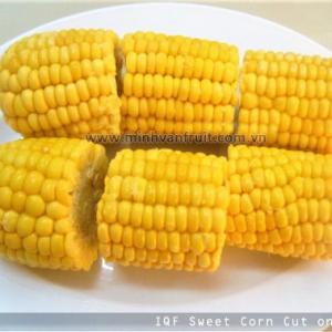 Frozen Sweet Corn Cob 1