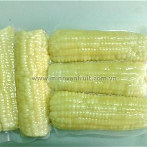 Frozen White Corn 1