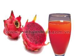 Red Dragon Fruit Puree 1