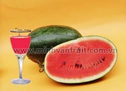 Watermelon Juice Concentrate 40 Brix 1